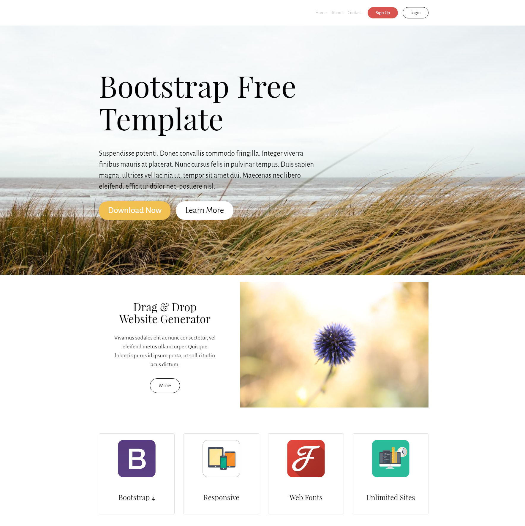 Responsive Bootstrap PurityM Themes
