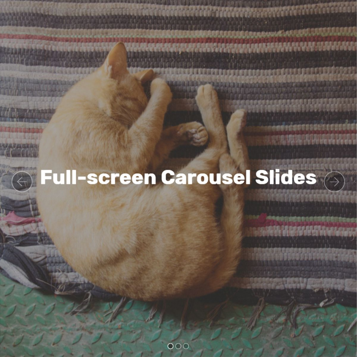 CSS Bootstrap Photo Carousel